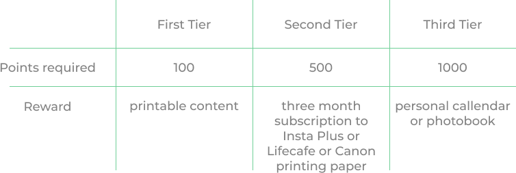 eCommerce loyalty program - Canon - comparison chart