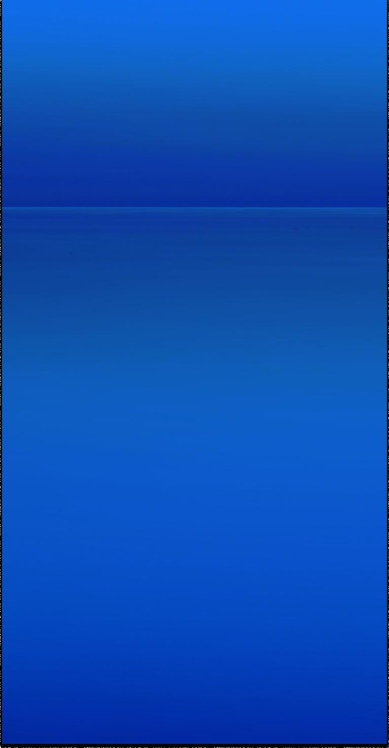 Shopware 6 development services